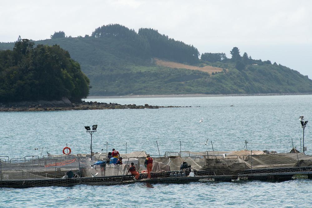Salmon aquaculture farm in Puerto Montt Chile