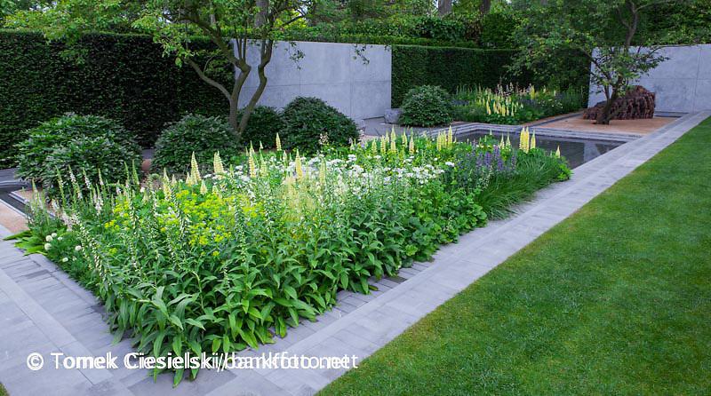 The Laurent-Perrier Garden, RHS Chelsea Flower Show 2014. Designer: Luciano Giubbilei