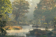 Ulster County, New York - Morning fog in Ulster County on Sept. 28, 2014.