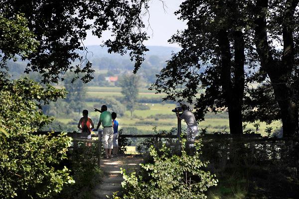 Nederland, Ubbergen, 19-6-2013Rondom en op de Duivelsberg. Uitzicht op en vanaf de kleine Motte richting de Duffelt.De Duivelsberg is een heuvel en natuurreservaat in de gemeenten Ubbergen en Groesbeek in de Nederlandse provincie Gelderland. De 75,9 meter hoge heuvel, in Duits Teufelsberg of Wylerberg , ligt op de stuwwal ten oosten van Nijmegen, tussen Berg en Dal, Beek en de Nederlands-Duitse grens. Het natuurgebied is voornamelijk begroeid met loofbomen. De berg behoorde aanvankelijk toe aan het dorp Wyler in de Duitse gemeente Kranenburg. Na de Tweede Wereldoorlog behoorde de Duivelsberg en omgeving tot de gebieden die Nederland op 23 april 1949 ten koste van Duitsland annexeerde.Foto: Flip Franssen/Hollandse Hoogte