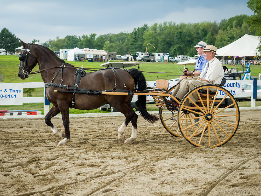 Carriages at Ludwig's Corner Horse Show