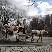 Horse and Carriages in Central Park, Manhattan, New York, USA. 26th March 2013. Photo Tim Clayton