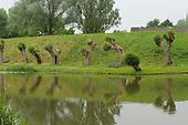 Fort Vreeswijk