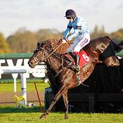 Bury Parade and Sam Twiston-Davies winning the 3.10 race