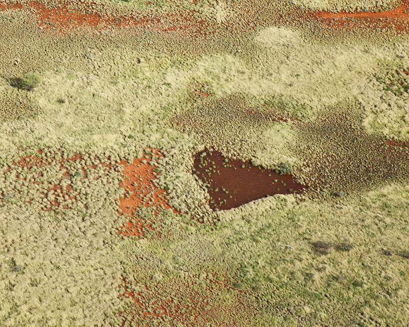 Texture, Colour and Patterns of the Western Simpson Desert during times of unprecedented rainfall over the past year. The normally red ochre coloured desert is covered in green growth.