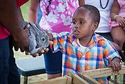 K'Mori Wilkinson gets to pet a rabbit at Connors Farm Pony Rides and Petting Zoo.  Easter Sunday Extravaganza at Crown Bay Center.  St. Thomas, VI.  5 April 2015.  © Aisha-Zakiya Boyd
