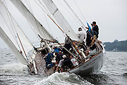 Black Watch sailing in the Museum of Yachting Classic Yacht Regatta.