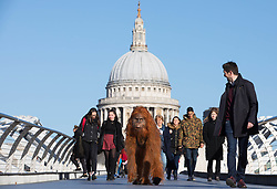 EDITORIAL USE ONLY An ultra-realistic animatronic Orangutan appears on Millennium Bridge in London to highlight the threat to the survival of the species due to deforestation caused by palm-oil production, following Iceland's Christmas advert being banned.
