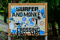 Surfer and Monkey crossing sign; Azuero Peninsula, Panama