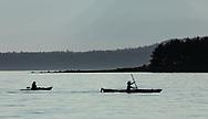 Kayakers returning to Auke Bay in Southeast Alaska. Summer. Evening.