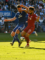 Football - 2018 / 2019 Premier League - Cardiff City v Liverpool<br /> <br /> Sean Morrison of Cardiff City prior to  conceding a  penalty against Mohamed Salah of Liverpool at Cardiff City Stadium.<br /> <br /> COLORSPORT/WINSTON BYNORTH