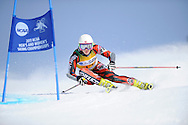 9 MAR 2011: Anne Cecile Brusletto of the University of New Mexico competes in the women's giant slalom alpine race during the 2011 NCAA Men and Women's Division I Skiing Championship held Stowe Mountain Resort and Trapp Family Lodge in Stowe, VT. ©Brett Wilhelm