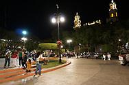 Viaggio in Messico, Merida Rio Lagartos riserva Naturale, 21-22-23 Novembre 2016 © foto Daniele Mosna Viaggio in Messico, Merida e Rio Lagartos,21-21-23- novembre 2016 © foto Daniele Mosna