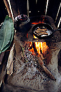 Live chiro worms (the larvae of longhorn beetles from the family Cerambycidae), in a frying pan with vegetable oil, comprise the lunch prepared by Marleni Real, 16, for her father and brother, Koribeni, Peru. Image from the book project Man Eating Bugs: The Art and Science of Eating Insects.