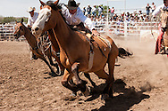 Miles City Bucking Horse Sale, pickup men, Jay Shaw, Lynn Ashley, Cody Shaw, bareback bronc, Montana, MODEL RELEASED, PROPERTY RELEASED on riders & horses only..