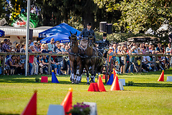 DodderSimonet Edouard, BEL, Bouke, Daywalker 5, El Fiero vd Vemmekeshoeve, Lordit, Topspeed Sanne<br /> Prizegiving FEI rider of the year<br /> Driving European Championship <br /> Donaueschingen 2019<br /> © Hippo Foto - Dirk Caremans<br /> Simonet Edouard, BEL, Bouke, Daywalker 5, El Fiero vd Vemmekeshoeve, Lordit, Topspeed Sanne