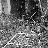 September 2014 Workshop -  Black and White and Film on the Abandoned Island of Poveglia<br /> <br /> HOW TO LICENCE THIS PICTURE: please contact us via e-mail at sales@xianpix.com or call our office in London +44 (0)207 1939846 for prices and terms of copyright. First Use Only ,Editorial Use Only, All repros payable, No Archiving.© MARCO SECCHI