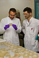 Pictured: Dr Leonardo Magneschi, Senior Scientist - Molecular Biology and Joan Cortada Garcia, Fermentation Research assistant<br /> <br /> The Economy Secretary, Keith Brown visited Ingenza today to view the laboratory facilities and met employees to discuss recruitment challenges posed by Brexit.<br /> <br /> Ger Harley | EEm 4 October 2017