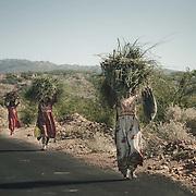 INDIA - Tribes in Kutch & White Desert