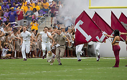 Texas A&M' mascot Reveille IX runs out on to the field with handler Texas A&M Corps of Cadets member Gavin Suel before the start of an NCAA college football game between Prairie View and Texas A&M Saturday, Sept. 10, 2016, in College Station, Texas. Texas A&M won 67-0. (AP Photo/Sam Craft) of an NCAA college football game Saturday, Sept. 10, 2016, in College Station, Texas. (AP Photo/Sam Craft)