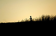 Oct 20, 2006; Walnut, CA, USA; Silhouette of Robbie Knorr of Valley Christian High, winner of the Division V boys sweepstakes race in the 59th Mt. San Antonio College Cross Country Invitational.