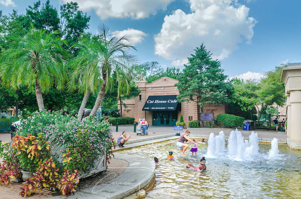 Children play in the fountain at the Memphis Zoo, September 8, 2015, in Memphis, Tennessee. In the background is a café which overlooks the monkey enclosure. The zoo features more than 3,500 animals representing more than 500 species; it is one of only four zoos in the nation to feature a panda exhibit. (Photo by Carmen K. Sisson/Cloudybright)
