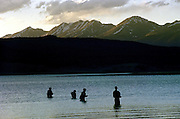 Fishermen Wade the Taylor Reservoir in Colorado at dusk