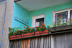 Marigolds grace this apartment porch near the Salt Pier in St. Petersburg, Russia.