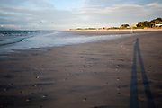 Punta Chame. Victoria Murillo/Istmophoto.com