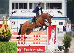 Bles Bart (NED) -  El Divo<br /> 4 jarige Springpaarden<br /> KWPN Paardendagen Ermelo 2013<br /> © Dirk Caremans