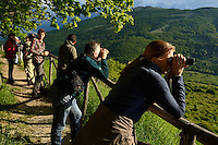 Wildlife watching in The Central Apennines rewilding area, Italy, in and around the Abruzzo, Lazio e Molise National Park.