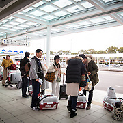 """CHIBA, JAPAN - JANUARY 27 : People with their dogs wait rented cars at the airport in Kagoshima, Japan on January 27, 2017. Japan Airlines """"wan wan jet tour"""" allows owners and their dogs to travel together on a charter flight for a special three-day domestic tour to Kagoshima Prefecture, southwestern Japan. As part of the package tour, the owners and their dogs will also get to stay together in a hotel and go sightseeing in rented cars.  (Photo by Richard Atrero de Guzman/ANADOLU Agency)"""