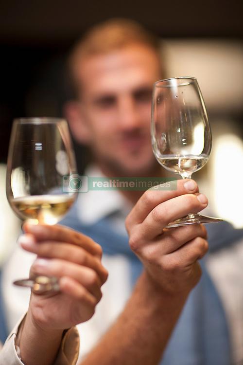 Holding up wine glass to check colour of wine (Credit Image: © Image Source/Albert Van Rosendaa/Image Source/ZUMAPRESS.com)