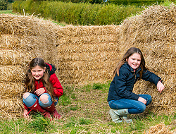 Kilduff Farm, East Lothian, Scotland, United Kingdom, 17 October 2019. Pumpkin Patch: The pick your own pumpkin patch gears up for its opening tomorrow. In its second year, Lucy and Russell Calder and their daughters, Maisie (10 years) and Louisa (8 years) make final preparations for visitors. The patch is open this weekend and next, selling a variety of Halloween carving pumpkins and culinary pumpkins.  A hay bale maze is an added attraction.<br /> Sally Anderson | EdinburghElitemedia.co.uk