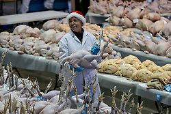 © Licensed to London News Pictures. 22/12/2019. York, UK. A seller holds up a turkey at the York Auction Centre's Christmas Poultry Auction of dressed poultry in York, northern England, on December 22, 2019. The annual sale of dressed poultry features over 1000 birds including turkeys, geese, pheasants, partridge, ducks and chickens. . Photo credit: Nigel Roddis/LNP