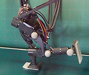 Photo shows the ARCHIRES running robot developed at the Ishikawa-Watanabe Lab at Tokyo University. ACHIRES is composed of high-speed vision and high-speed actuators to achieve instantaneous recognition and behavior. It utilises similar technologies tot he lab's Janken (Rock Paper Scissors) Robot. High-speed vision detects the state of the biped robot including the timing of landing at 600 fps. At present, the running velocity reaches 4.2 km/h and simple control based on high-speed performance of sensory-motor system prevents the robot from falling.