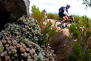 Oak Valley ( Elgin / Grabouw ), SOUTH AFRICA - local flora during stage six of the Absa Cape Epic Mountain Bike Stage Race in Oak Valley ( Elgin / Grabouw ) on the 27 March 2009 in the Western Cape, South Africa..Photo by Sven Martin /SPORTZPICS