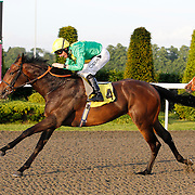 Exceptionelle and Neil Callan winning the 8.00 race