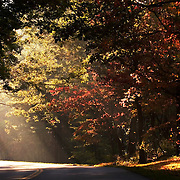 ASHEVILLE, NC - OCTOBER 28: Sunbeams filter through the foliage over the Blueridge Highway in the Appalachian Mountains in North Carolina.. (Photo by Logan Mock-Bunting) Fall Foliage near Asheville on the Blueridge parkway.