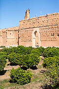 El Badi Palace sunken garden orange groves, Marrakesh, Morocco, 2016–04-22.<br /><br />The El Badi Palace and sunken gardens are a short walk from Bahia, within the old, towering Medina walls of the Mellah. <br /><br />Commissioned by the Arab Saadian sultan Ahmad-al-Mansur and completed in 1593, the complex took 25 years to build and is considered to be some of the finest examples of Saadian architecture in Moroco. <br /><br /><br />A ruined palace, the site is often being renovated and restored, but remains to be many peoples favourite Marrakesh palace experience.