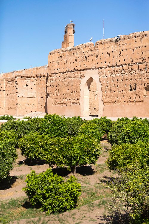 El Badi Palace sunken garden orange groves, Marrakesh, Morocco, 2016–04-22. <br />