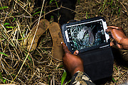 Rhino poaching gang arrest and crime scene, Phinda Private Game Reserve, Zululand, KwaZulu Natal, South Africa
