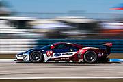 March 15-17, 2018: Mobil 1 Sebring 12 hour. 67 Ford Chip Ganassi Racing, Ford GT, Ryan Briscoe, Richard Westbrook, Scott Dixon