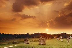 July 21, 2019 - Avebury Prehistoric Stone Circle, Wiltshire, England (Credit Image: © Bilderbuch/Design Pics via ZUMA Wire)