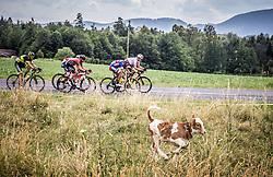 Matteo Rabottini (ITA) of Meridiana Kamen Team during Stage 3 of 24th Tour of Slovenia 2017 / Tour de Slovenie from Celje to Rogla (167,7 km) cycling race on June 16, 2017 in Slovenia. Photo by Vid Ponikvar / Sportida