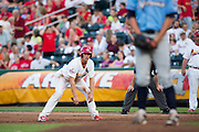 Stephen Piscotty (12) of the Springfield Cardinals takes a lead off of first base during a game against the Northwest Arkansas Naturals at Hammons Field on August 23, 2013 in Springfield, Missouri. (David Welker)