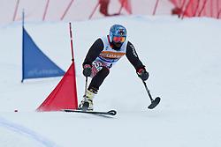 GREEN Ralph, USA, Team Event, 2013 IPC Alpine Skiing World Championships, La Molina, Spain