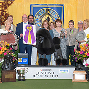 Poodle Club of America-Standards 2019