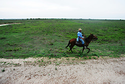 "A cowboy gallops his horse across Los Llanos in Venezuela. Los LLanos are the grasslands in western Venezuela famous for the ""llanera"" culture of cowboys and music.  Many working ""Hatos"" , or cattle ranches, dot the landscape of grasslands and river systems, offering tourists a chance to see the beautiful landscape and various wildlife.  Tourists go out on land and water excursions where they get a chance to see see caiman, orinoco crocodile, anaconda, piranha, numerous bird species and capybara, the world's largest rodent."
