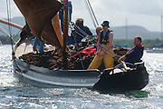 """Cian de Buitléir steering  """"Star of the West""""  during  the Crinniu na mBad (Gathering of the boats) Festival  in Kinvara Co. Galway at the weekend featuring Galway hookers racing across the bay. Photo:Andrew Downes"""